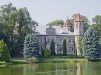 Dąbrówka Wielkopolska - Pałac