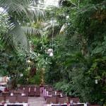 Zielonogórska Pamiarnia - Restauracja