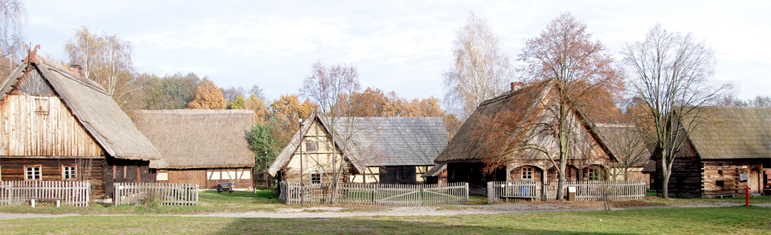 Zielona Góra i okolice
