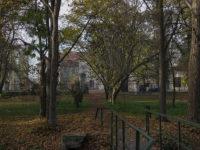 Bojadła - Park obok pałacu