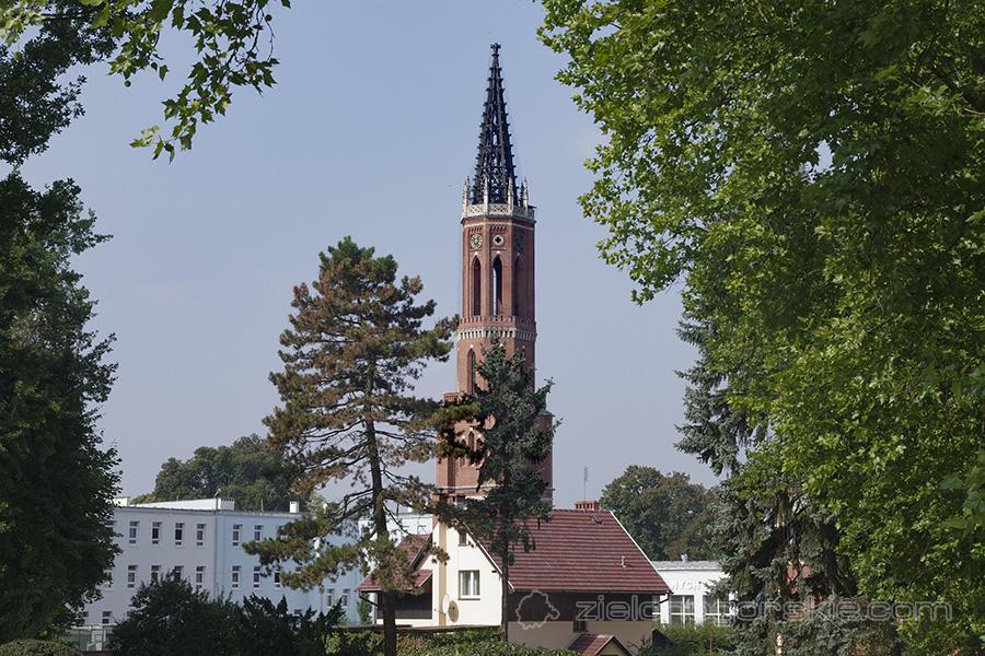 Żagań - WIeża kościoła ewangelickiego